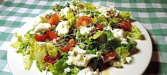Salata cu mozarella si ansoa photo